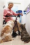 Senior woman doing laundry with dogs Stock Photo - Premium Royalty-Free, Artist: Blend Images, Code: 693-06019449