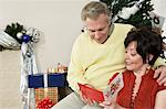 Senior couple looking at Christmas card in front of decorations Stock Photo - Premium Royalty-Free, Artist: Ikon Images, Code: 693-06019527