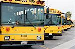 School Busses Parked in Parking Lot Stock Photo - Premium Royalty-Free, Artist: F. Lukasseck, Code: 693-06020747