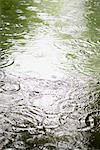 Raindrops on surface of water Stock Photo - Premium Royalty-Free, Artist: Bettina Salomon, Code: 632-06030079