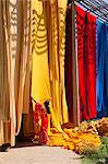 Woman in sari checking the quality of freshly dyed fabric hanging to dry, Sari garment factory, Rajasthan, India, Asia Stock Photo - Premium Rights-Managed, Artist: Robert Harding Images, Code: 841-06031281