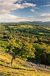 Rolling countryside surrounding the Usk Valley, Brecon Beacons National Park, Powys, Wales, United Kingdom, Europe Stock Photo - Premium Rights-Managed, Artist: Robert Harding Images, Code: 841-06031517