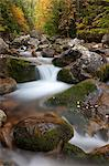 Rocky mountain stream through autumn woodland, Tatra Mountains, Slovakia, Europe Stock Photo - Premium Rights-Managed, Artist: Robert Harding Images, Code: 841-06031538