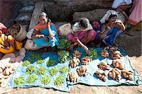 Mali tribeswomen selling chillies and sweet potatoes at weekly market, Rayagader, Orissa, India, Asia Stock Photo - Premium Rights-Managednull, Code: 841-06031747