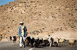 Shepherd driving a herd near Toujane village, Tunisia, North Africa, Africa Stock Photo - Premium Rights-Managed, Artist: Robert Harding Images, Code: 841-06032478