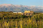 Monastery of Ayios Ioannis Theologos and White Mountains in spring, Aptera, Chania region, Crete, Greek Islands, Greece, Europe Stock Photo - Premium Rights-Managed, Artist: Robert Harding Images, Code: 841-06033521