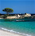 Palombaggia Beach, near Porto Vecchio, South East Corsica, Corsica, France, Mediterranean, Europe Stock Photo - Premium Rights-Managed, Artist: Robert Harding Images, Code: 841-06033745