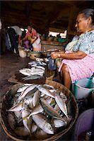 Woman selling fish, Mapusa Market, Goa, India, Asia Stock Photo - Premium Rights-Managednull, Code: 841-06033991