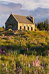 Church of the Good Shepherd, Lake Tekapo, South Island, New Zealand, Pacific Stock Photo - Premium Rights-Managed, Artist: Robert Harding Images, Code: 841-06034075