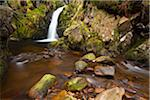Harthope Linn, Harthope Valley, Northumberland National Park, Northumberland, England Stock Photo - Premium Royalty-Free, Artist: Jason Friend, Code: 600-06037813