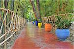Foot Path in Jardin Majorelle, Marrakech, Morocco Stock Photo - Premium Rights-Managed, Artist: Raimund Linke, Code: 700-06038048