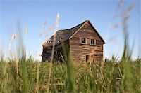 Old Abandoned Wooden Barn in Grassy Field, Pincher Creek, Alberta, Canada Stock Photo - Premium Rights-Managednull, Code: 700-06038203
