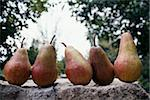William pears Stock Photo - Premium Rights-Managed, Artist: Photocuisine, Code: 825-06045988