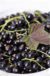 Blackcurrants Stock Photo - Premium Rights-Managed, Artist: Photocuisine, Code: 825-06048619