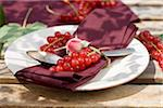 Napkin,rosebud and redcurrants on a plate Stock Photo - Premium Rights-Managed, Artist: Photocuisine, Code: 825-06048625