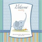 delicate baby boy shower card Stock Photo - Royalty-Free, Artist: balasoiu                      , Code: 400-06060635