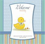 new baby card with little duck Stock Photo - Royalty-Free, Artist: balasoiu                      , Code: 400-06060637