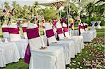 fragment like view of nice chairs ready for wedding ceremony Stock Photo - Royalty-Free, Artist: ersler                        , Code: 400-06061543
