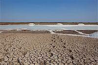 salt pans on the little rann of kutch in gujarat india Stock Photo - Royalty-Freenull, Code: 400-06064762