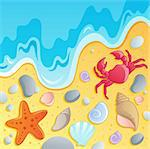 Beach with shells and sea animals 1 - vector illustration. Stock Photo - Royalty-Free, Artist: clairev                       , Code: 400-06073727