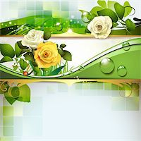 Springtime background with roses Stock Photo - Royalty-Freenull, Code: 400-06082390