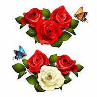Roses with butterflies on white background Stock Photo - Royalty-Freenull, Code: 400-06082415