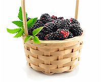 blackberries in a basket on white background Stock Photo - Royalty-Freenull, Code: 400-06090663