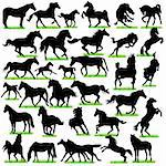 32 Horses Silhouettes Set Stock Photo - Royalty-Free, Artist: kaludov                       , Code: 400-06095051