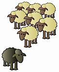 A black sheep being shunned from the rest of the flock for being different. Stock Photo - Royalty-Free, Artist: JSlavy                        , Code: 400-06096689