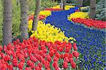 Keukenhof Gardens, Lisse, Netherlands Stock Photo - Royalty-Free, Artist: phbcz                         , Code: 400-06105681