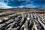 Moughton Scars, Yorkshire Dales, Yorkshire, Yorkshire and the Humber, England Stock Photo - Premium Royalty-Free, Artist: Jason Friend, Code: 600-06109535