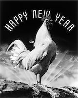 1950s ROOSTER STANDING ON HILL CROWING WITH RAYS OF SUNLIGHT PEEKING UP FROM BEHIND & HAPPY NEW YEAR SPELLED OUT IN ARC OVERHEAD Stock Photo - Premium Rights-Managednull, Code: 846-06112219
