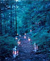 Lanterns marking a path through the woods Stock Photo - Premium Royalty-Freenull, Code: 614-06116084