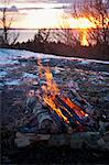Log burning in forest at dawn Stock Photo - Premium Royalty-Free, Artist: AWL Images, Code: 698-06116816