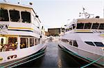 Ferries moored at harbor in city Stock Photo - Premium Royalty-Free, Artist: Blend Images, Code: 698-06117002