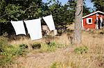 Clothes hanging on clothesline in back yard Stock Photo - Premium Royalty-Free, Artist: CulturaRM, Code: 698-06117066