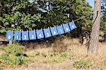 Clothes drying on rope with numbers written on it Stock Photo - Premium Royalty-Free, Artist: Jean-Christophe Riou, Code: 698-06117087