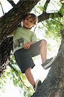 Boy standing in tree, low angle view Stock Photo - Premium Royalty-Freenull, Code: 632-06118761