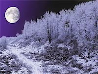 Large moon shining over a hill in winter. Stock Photo - Royalty-Freenull, Code: 400-06128374