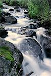Stream flowing in Colorado, U.S.A. Stock Photo - Royalty-Free, Artist: nrjask                        , Code: 400-06128467