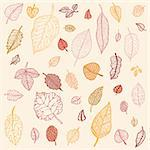 Autumn falling leaves set. Background. Vector Illustration. Stock Photo - Royalty-Free, Artist: katyau                        , Code: 400-06136028
