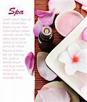 Spa treatment concept with empty space for your text Stock Photo - Royalty-Free, Artist: miss_j                        , Code: 400-06138144