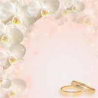 Wedding background with the rings and orchid Stock Photo - Royalty-Freenull, Code: 400-06141093