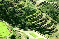 philippine terrace farming - Banaue rice terraces Stock Photo - Royalty-Freenull, Code: 400-06144374