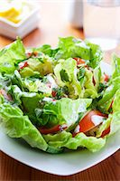 Lettuce with tomatoes and yogurt dressing Stock Photo - Premium Royalty-Freenull, Code: 659-06151289