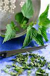 Nettles and chopped nettles Stock Photo - Premium Royalty-Free, Artist: Robert Harding Images, Code: 659-06151618