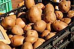 Fresh Organic Potatoes in Crates at Farmer's Market Stock Photo - Premium Royalty-Free, Artist: AWL Images, Code: 659-06152965