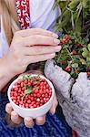 A woman picking lingonberries Stock Photo - Premium Royalty-Free, Artist: Cultura RM, Code: 659-06153013