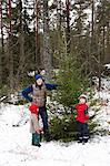Family picking Christmas tree outdoors Stock Photo - Premium Royalty-Free, Artist: Aurora Photos, Code: 649-06164680