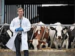 Veterinarian walking by cows in barn Stock Photo - Premium Royalty-Free, Artist: Christina Handley, Code: 649-06164933